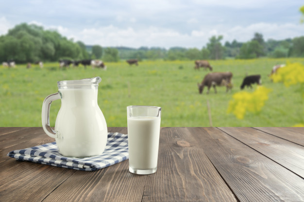 milk with cow meadow